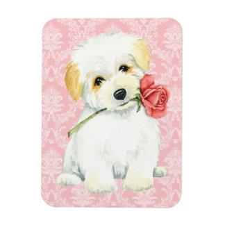 Valentine Rose Coton Magnet