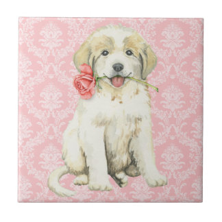 Valentine Rose Great Pyrenees Tile