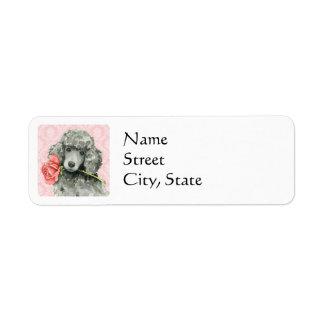 Valentine Rose Standard Poodle