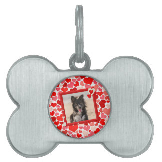 Valentines Border Collie Dog Hearts Pet Name Tag