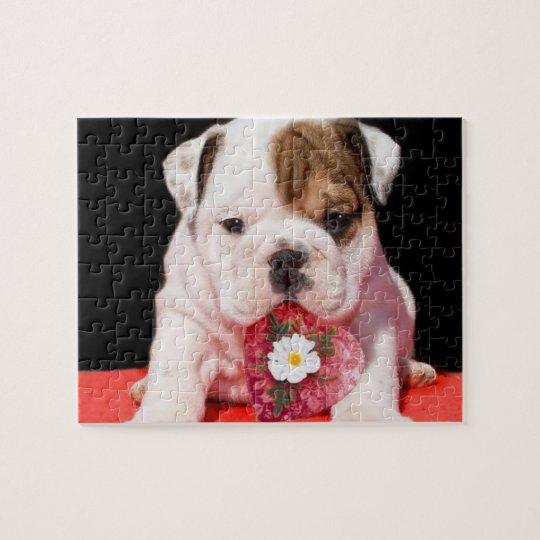 Valentine's bulldog puppy jigsaw puzzle