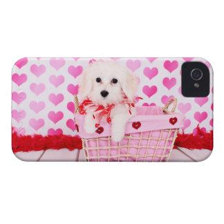 Valentines - Coton de Tulear - Sophie iPhone 4 Cases