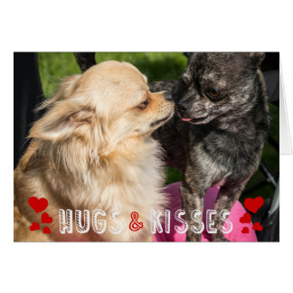 Valentine's Day Cute Dog Photo Hugs and Kisses Card