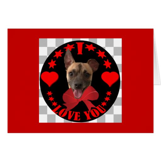 VALENTINE'S DAY DOGGY GREETING CARDS