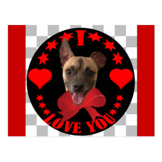 VALENTINE'S DAY DOGGY POSTCARD