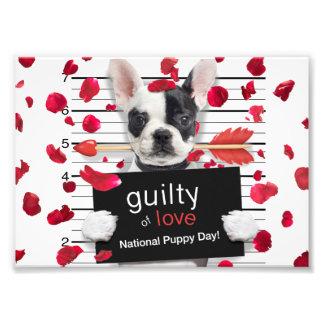 Valentine's day french bulldog photo print