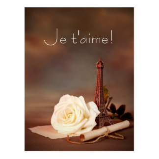 Valentine's Day in Paris Postcard