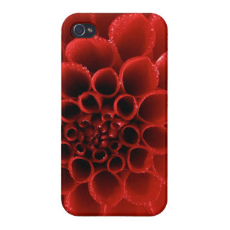 Valentine's Day IPhone Case iPhone 4/4S Covers