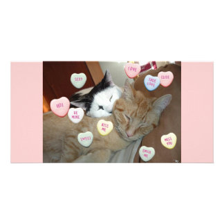 Valentine's Day Kittens Customized Photo Card