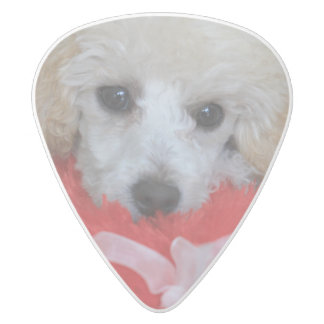 Valentine's Day Poodle  Dog White Delrin Guitar Pick