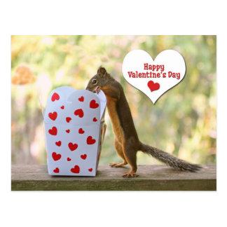 Valentines Day Squirrel Postcard
