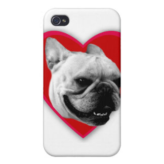 Valentine's French Bulldog iPhone 4/4S Cover