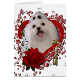 Valentines - Key to My Heart - Maltese Card