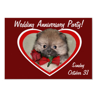 Valentine's pomeranian puppy card