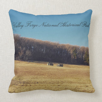 Valley Forge Pillow