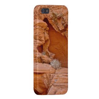 VALLEY OF FIRE ERODED DESERT ROCKS DETAIL iPhone 5/5S CASE