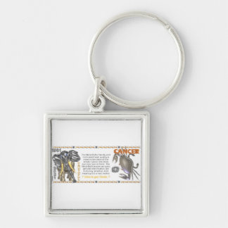 Valxart 1961 2021 MetalBull zodiac Cancer Silver-Colored Square Keychain