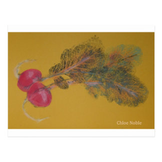 Valya's Radishes Postcard