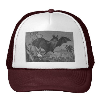 Vampire Bat Lithograph Faded Trucker Hat