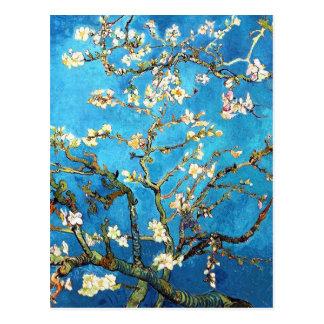 Van Gogh Almond Blossom Fine Art Postcard