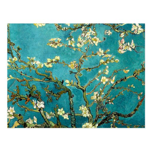 Van Gogh Almond Blossoms Tree Postcards