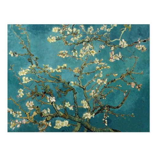 Van Gogh Blossoming Almond Tree Postcard
