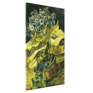 Van Gogh Cineraria in a Flowerpot (F282) Stretched Canvas Print