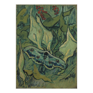 Van Gogh Giant/ great peacock moth /Emperor moth Poster