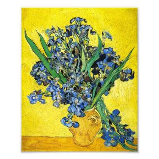 Van Gogh Irises Print