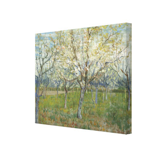 Van Gogh Orchard with Blooming Apricot Trees Canvas Print