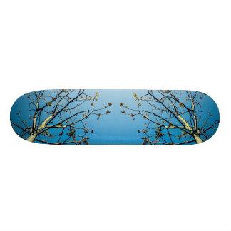 Van Gogh Style Custom Skate Board