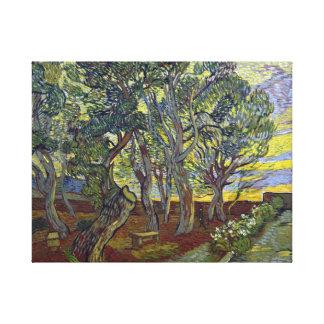 van Gogh The Garden of Saint Paul's Hospital Canvas Print