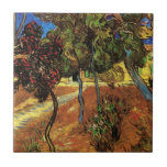 Van Gogh Trees in the Garden, Saint-Paul Hospital