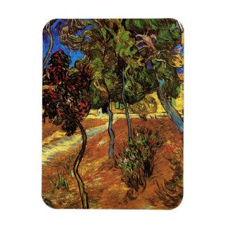 Van Gogh Trees in the Garden, Saint Paul Hospital Magnet