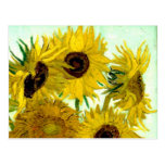 Van Gogh: Vase Twelve Sunflowers Vintage Fine Art Postcard