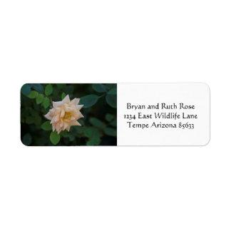 Vanilla rose return address label