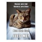 Vanlentine Cat Feed Me poem Postcard