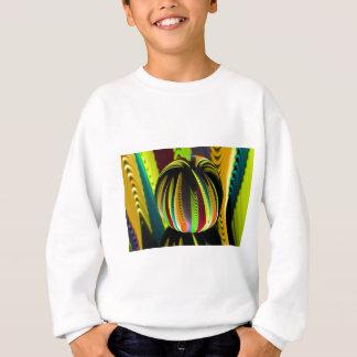 Variation ColoursI in Ball Sweatshirt