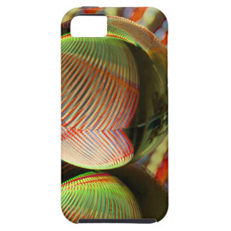 Variation on a theme 2 iPhone 5 cover