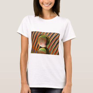 Variation on a theme 2 T-Shirt