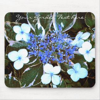 Variegated Blue Hydrangea Mousepad