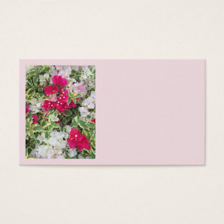 Variegated Bougainvillea Business Card
