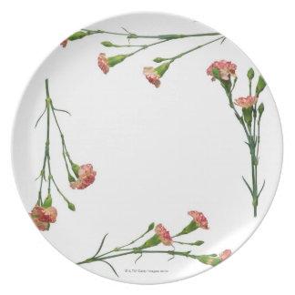 Variegated Carnation Frame Plate