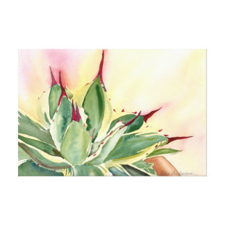 Variegated dwarf agave canvas print