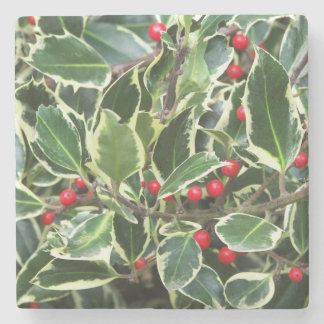Variegated English Holly Floral Stone Coaster