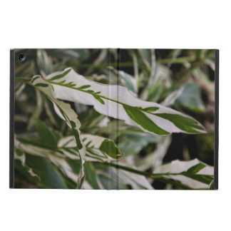 Variegated Ginger Powis iCase iPad Air case