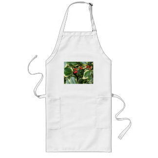 variegated holly long apron