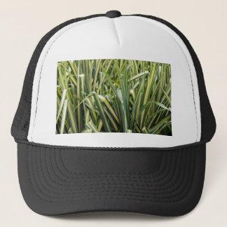 Variegated Sedge Grass Trucker Hat