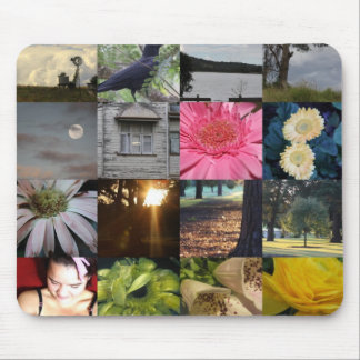 Variety Collage Mousepad ~ Gerbera House Moon
