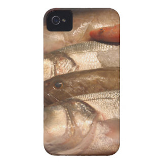Variety of Fresh Fish Seafood on Ice 2 iPhone 4 Case